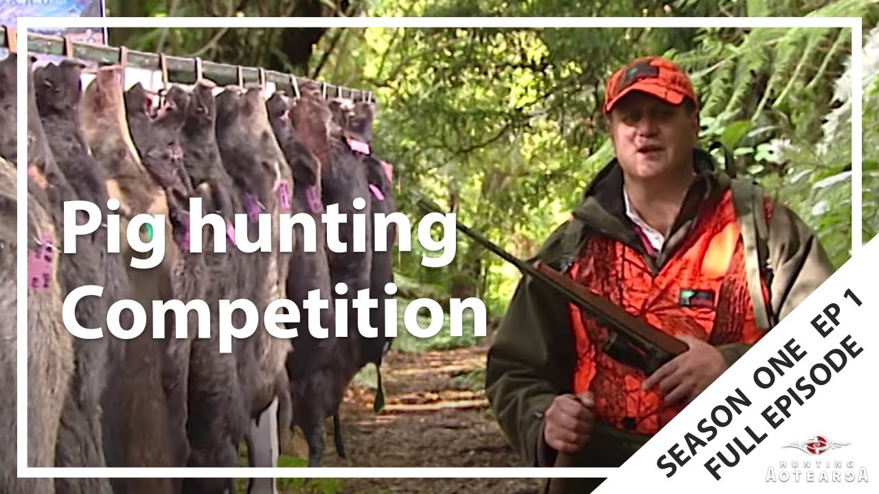 Hunting Aotearoa S01E01 – Ataiamuri Pig Hunting in the Central Plateau Pine Forests