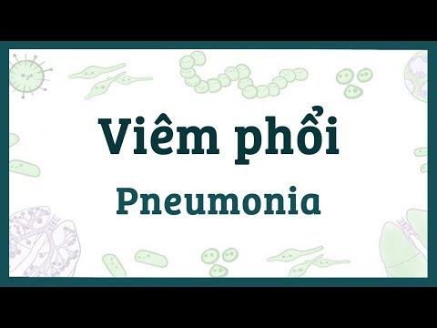 Viêm phổi - Nguyên nhân, triệu chứng, chẩn đoán, điều trị, bệnh lý