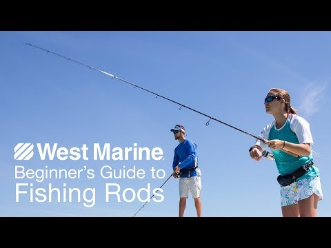 Beginner's Guide To Fishing Rods