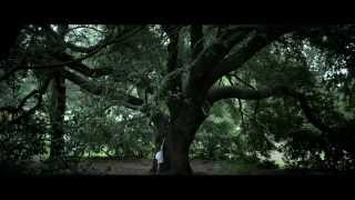ronald mcdonald house charities tree of life commercial