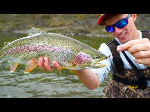 Alaskan Bush Fishing With MICRO Lures & Light Tackle
