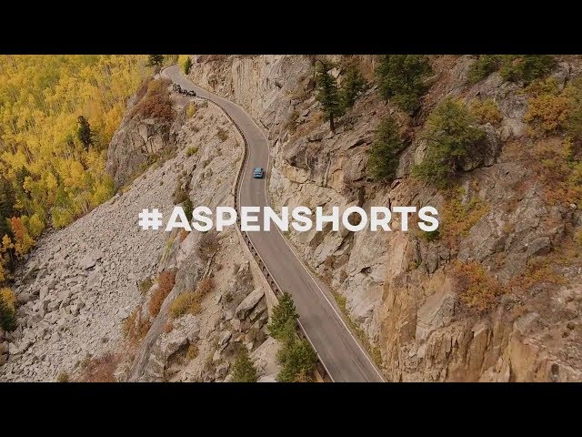 Autumn in Aspen // Planet Unicorn Stories