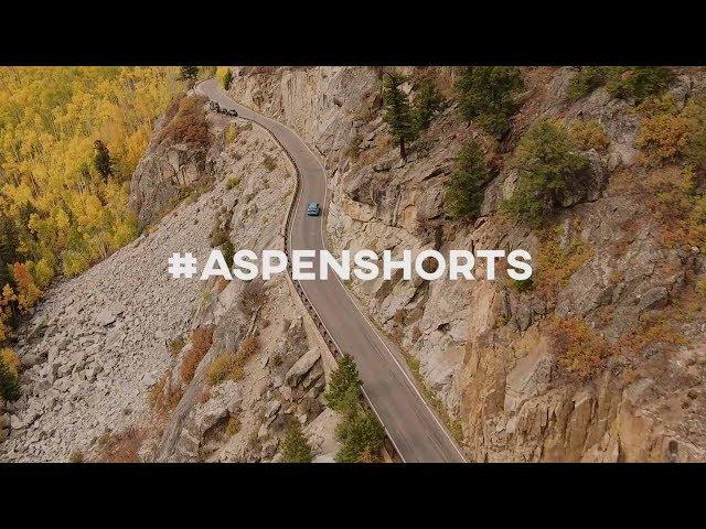 Autumn in Aspen // Planet Unicorn Stories