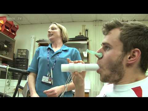 Lung Capacity - The Human Body - A User's Guide