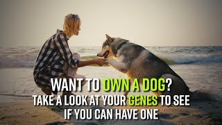 Want to own a dog? Take a look at your genes to see if you can have one