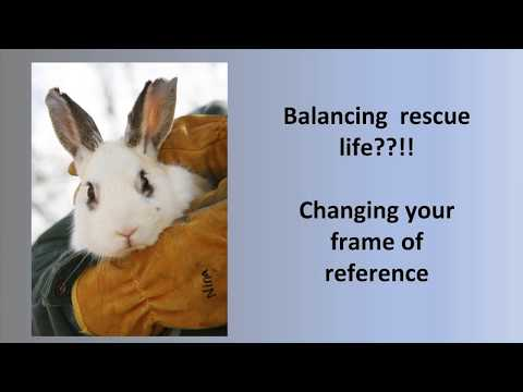 2017 HRS Educator's Conference: Debby Widolf - Staying Strong in Rescue