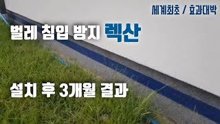 27.벌레퇴치-렉산 방…
