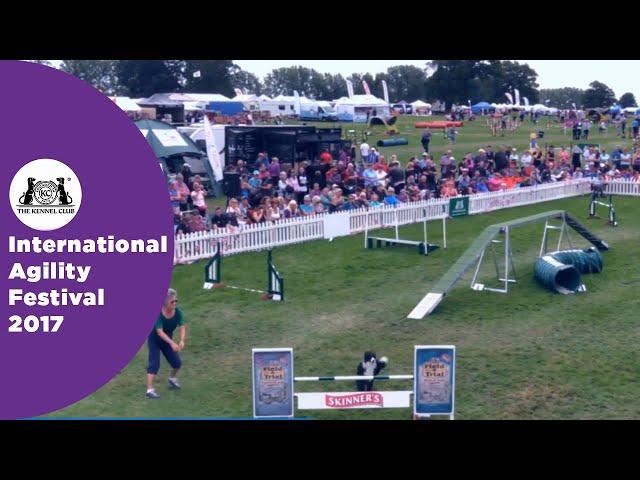 Olympia Quarter Final Large - G3-5 Novice - Part 2 | International Agility Festival 2017
