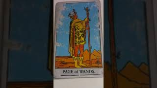 Find out what the Page of Wands means as feelings in your love read...
