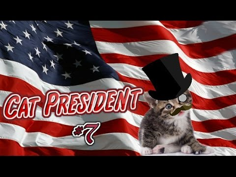 Cat President ~ A More Purrfect Union #7 - CAT NAPPED