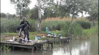 Карп в Берегово на озере Ту-Ту