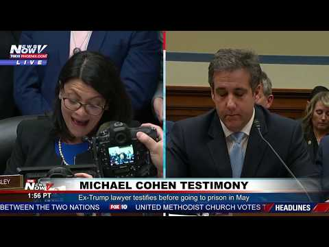 RACIST BATTLE: Rashida Tlaib GOES OFF At Michael Cohen Hearing On Mark Meadows