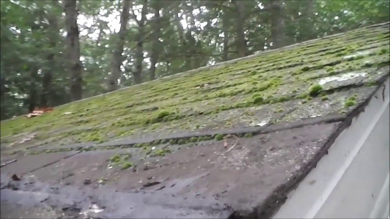 How To Remove Moss From A Roof Fast Part 2 After