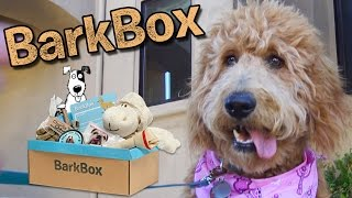 BARK BOX Doggy Delivery!!! Chloe's First Surprise Pupbox!