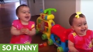 Twin babies think family dog is absolutely hysterical
