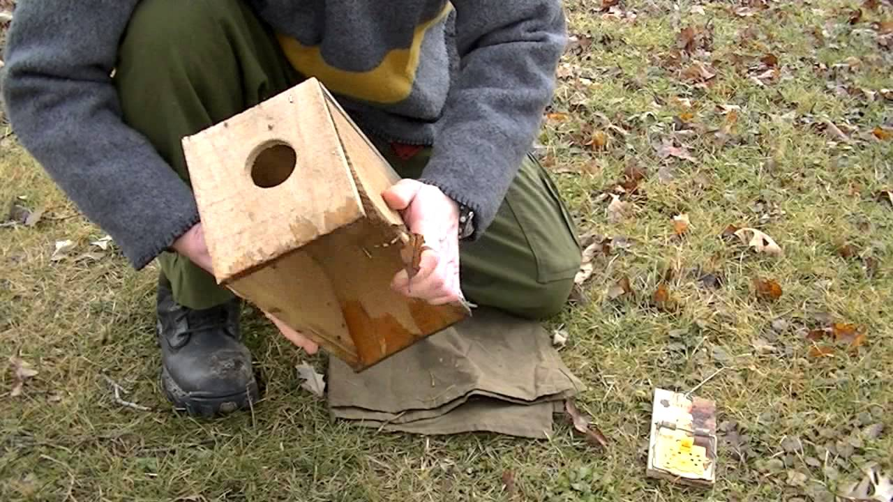 how to make a conibear trap setter