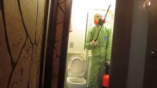 Как происходит уничтожение тараканов в квартире(, 2015-01-20T20:49:24.000Z)