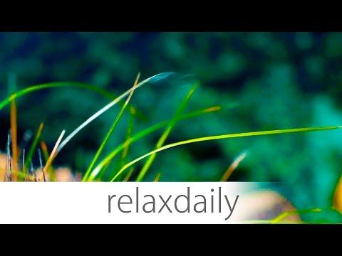 Instrumental Music - relaxing, light, easy, background - Season 3