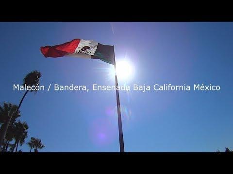caminando con Moito en el centro de la ciudad de Ensenada  Baja California  (Mexico)