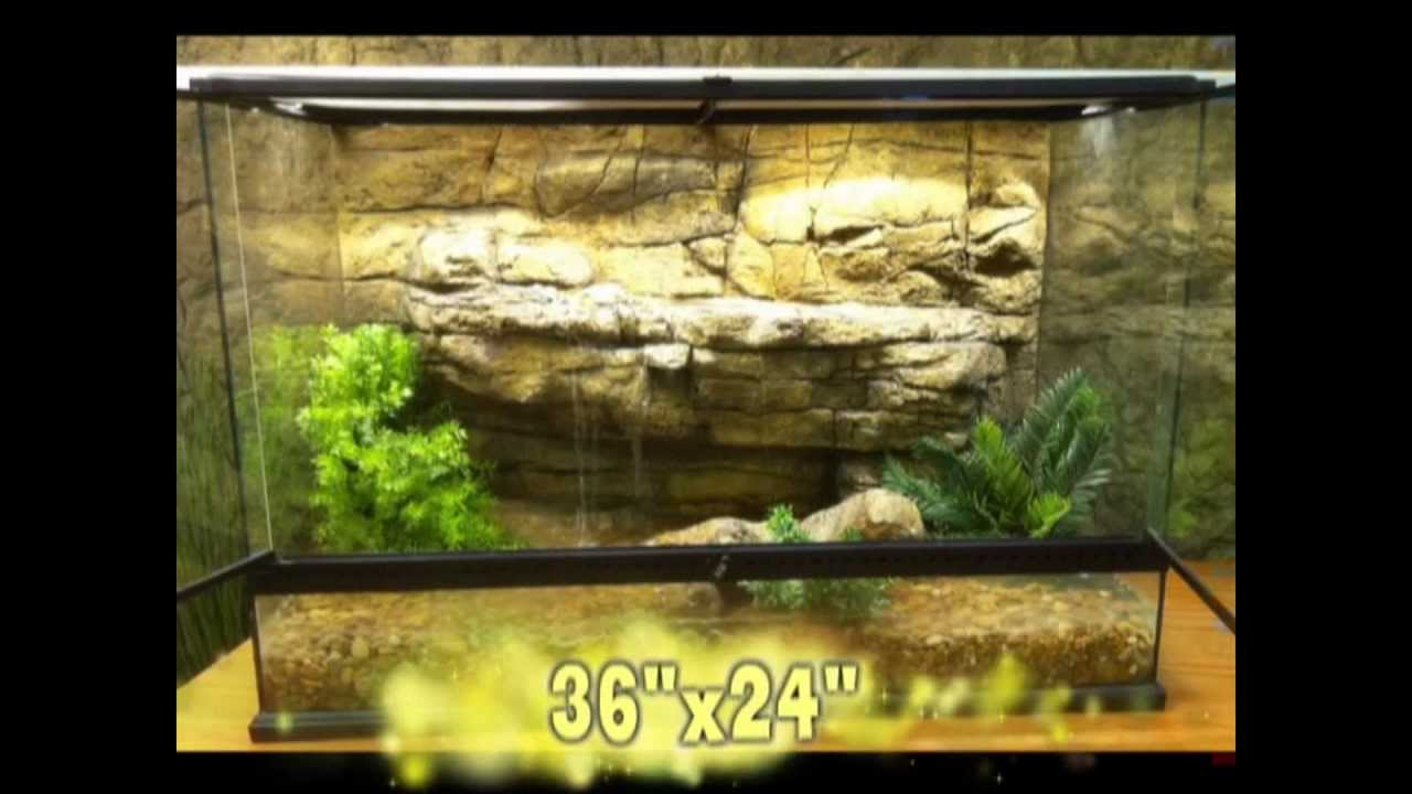 3D Backgrounds for Exo Terra Terrariums and Reptile Enclosures - YouTube