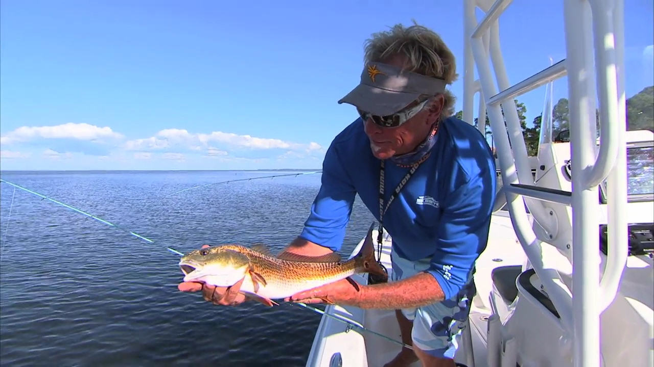 Choctawhatchee bay fishing for redfish in destin florida for Destin florida fishing report