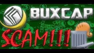 BuxCap полный обзор и стратегия развития аккаунта. 🔎 📈 💲SCAM!!! Video