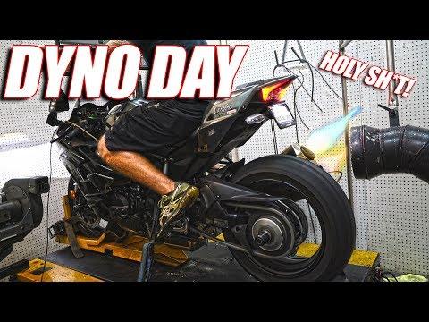 DYNO DAY  Dyno the Ninja H2 INSANE NUMBERS!!!