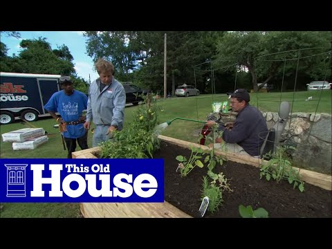 how to plant a raised garden bed this old house - Garden Bed