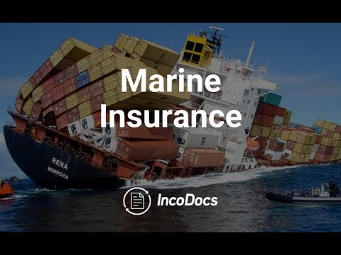 The Import Export Podcast - Marine Insurance Shipping Logistics Global Trade