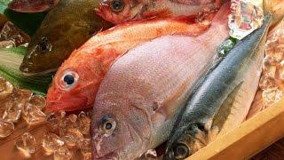 Сравниваем морскую и речную рыбу