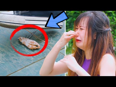 Clumsy Struggles We All Face! Awkward Moments Everyone Can Relate To | Funny Moments DIY Life Hacks