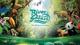 Video Video Tour of Singapore's River Safari (Giant Pandas, Amazon River Quest, Amazon Flooded Forest) download MP3, 3GP, MP4, WEBM, AVI, FLV Juni 2018