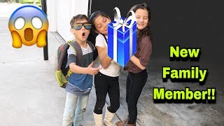 NEW MEMBER OF OUR FAMILY!! YOU WONT BELIEVE IT!! |Familia Diamond