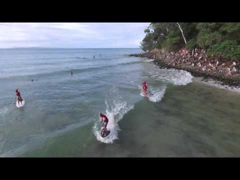 Noosa Festival of Surfing 2016 - The Vetshop Australia Surfing Dog Spectacular