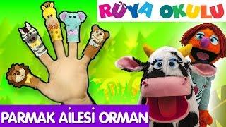 Parmak Ailesi Türkçe | Orman Hayvanları | Çizgi Film Bebek Şarkıları | RÜYA OKULU