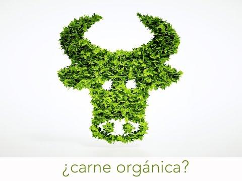 Carne Orgánica Vs. Carne No Orgánica