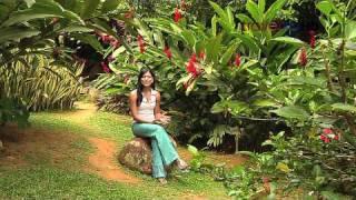 Xplore Seychelles Mahe