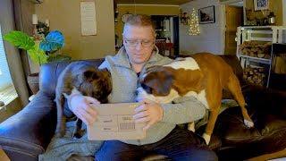 CRAZY Opening Of Surprise Gift! Talking Boxer Dog Shredding The Box!