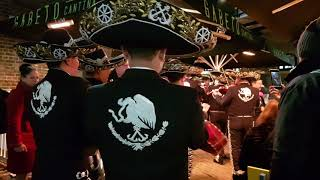 Mariachi de la Secretaría de Marina en Londres, cielito lindo ( flash mobs in London )