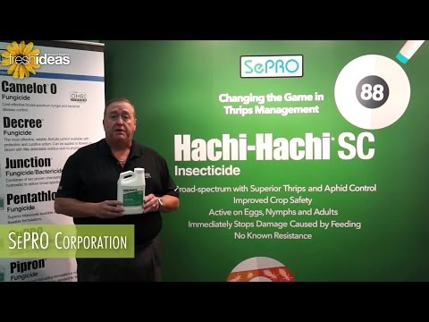 Sepro Changes The Game In Thrips Management With Hachi Hachi SC
