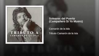 Soleares del Puerto (Compañero Si Yo Muero)