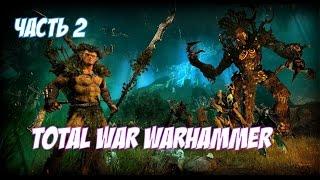 Эльфы Великого Леса! ► Total War: Warhammer - уроки Поражения!
