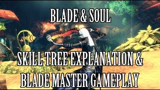 Blade & Soul: Explanation of Skill Trees + Blade Master Class Details