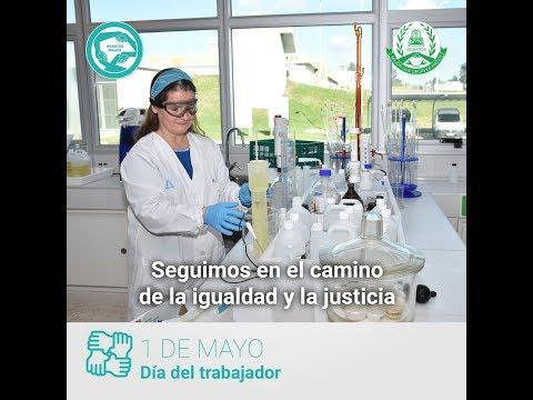 LABORALTY. Documento laboral: ACTA ADMINISTRATIVA DE SANCIÓNиз YouTube · Длительность: 3 мин42 с