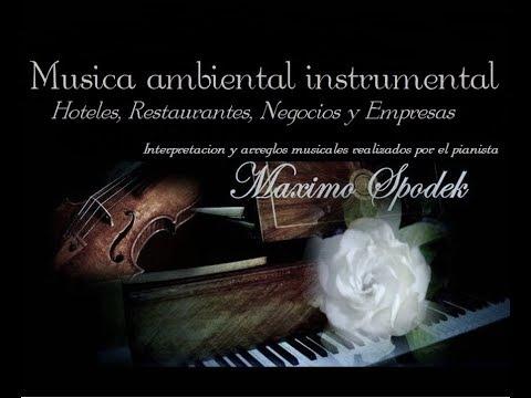 MUSICA AMBIENTAL INSTRUMENTAL, HOTELES, RESTAURANTES, NEGOCIOS Y EMPRESAS