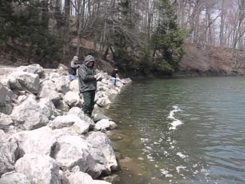Steelhead Fishing Erie Pennsylvania Elk Creek Water Conditiions April,12 2011 #2