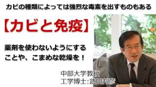 ◆武田邦彦:<カビと免疫>化学薬品的な『除カビ剤』などを使用せずに、カビを拭き取ったり乾燥することが大事!