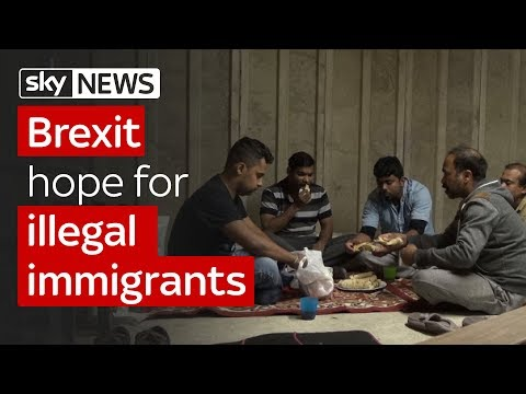Brexit hope for illegal immigrants