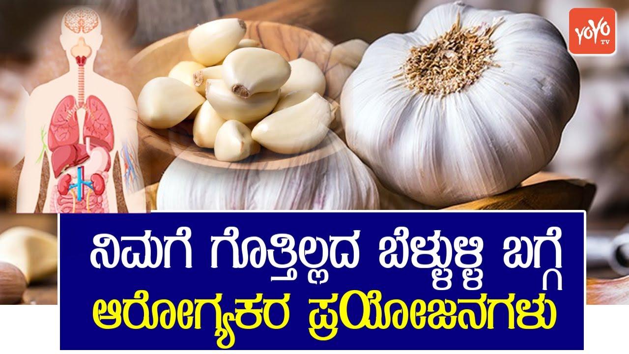 ನಿಮಗೆ ಗೊತ್ತಿಲ್ಲದ ಬೆಳ್ಳುಳ್ಳಿ ಬಗ್ಗೆ ಆರೋಗ್ಯಕರ ಪ್ರಯೋಜನಗಳು | Garlic Benefits In Kannada | YOYO TV Kannada - YouTube