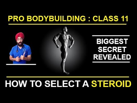 How to Select $teroids for Cycle   Pro Bodybuilding class 11   Dr.Education Hindi Eng